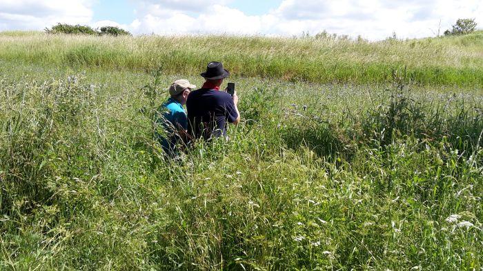 Männer im Gras