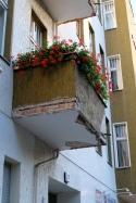 Wenn die Fassade bröckelt -lasst 1000 Blumen blühn.